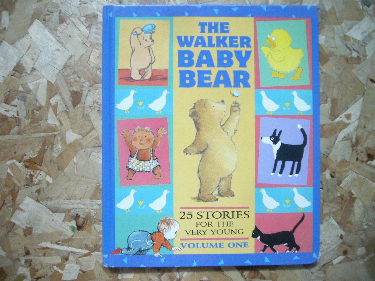 The Walker Baby Bear