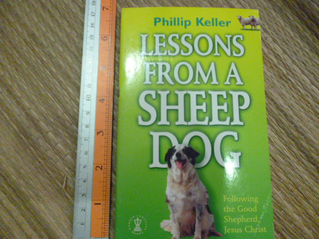 Lessons From a Sheep Dog (Following the Good Shepherd, Jesus Christ)