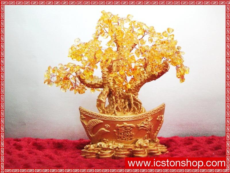▽ต้มไม้มงคลซิทริน Citrine เหรียญจีนทอง (size L)