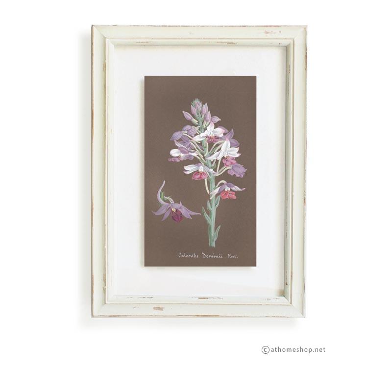 วอลล์อารต์ลายดอกไม้ กรอบบัวสีขาวกระจกคู่