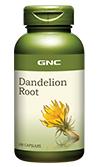 GNC Dandelion Root จีเอ็นซี แดนดิไลอ้อน รูท 100 Capsules Code: 191632 เลขทะเบียน อย. K 14/53