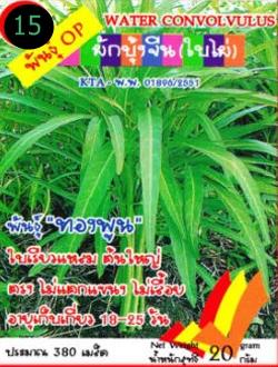 เมล็ดพันธุ์ผักบุ้งจีน(ใบไผ่ ซองเล็ก)