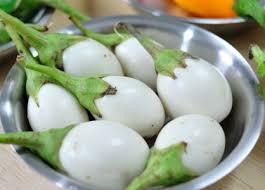 มะเขือไข่เต่าขาว 100 เมล็ด/ซอง