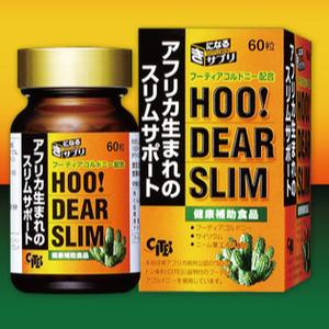 HOODEAR SLIM Hoodia ฮูเดียกระบองเพชรสูตรยับยั้งความหิว ลดความความอยาก สุดยอดการลดน้ำหนัก กินแล้วไม่หิว ไม่อยาก ไม่ทำร้ายร่างกาย ใช้หลักการของคนแอฟริกาที่แล้นแค้นอาหาร กินแต่กระบองเพชรฮูเดีย เพื่อการดำรงชีวิตไม่ให้หิว